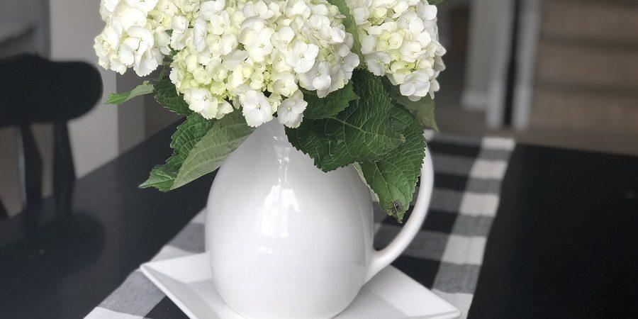 Sweet Carolina 30 Day Hydrangeas